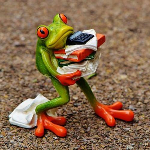 frog-1339892__340.jpg