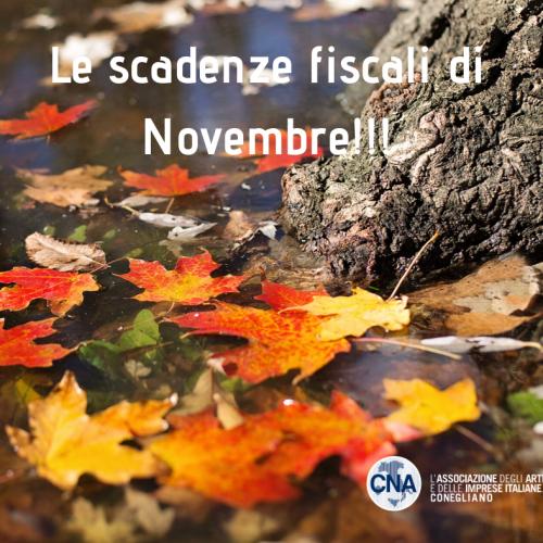 Le scadenze fiscacali di Novembre!!.png
