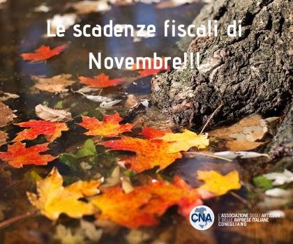 LE SCADENZE FISCALI DI NOVEMBRE!!!
